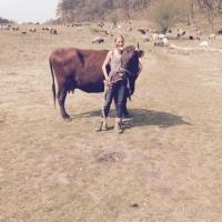 Rote Kuh – Galina