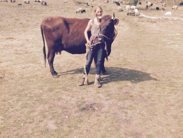 Rote Kuh - Galina