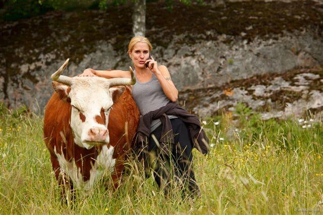 Die Tieragentur von Katja Elsässer